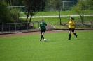 Damen - TSV Schornbach